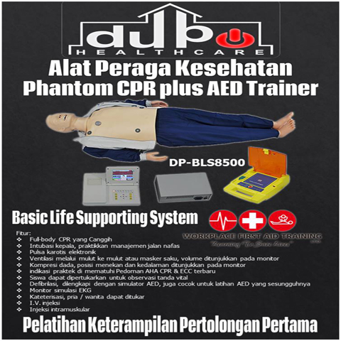 Phantom Basic Life Support System CPR DP-BLS8500 DuPo Healthcare